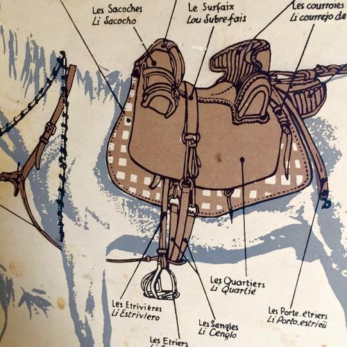 Lithographie cheval Camargue