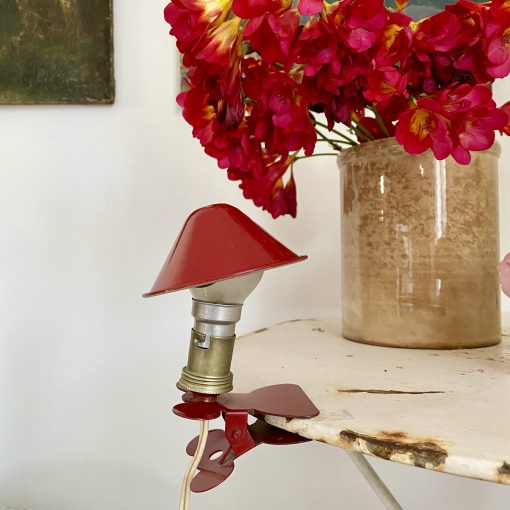 Lampe baladeuse champignon